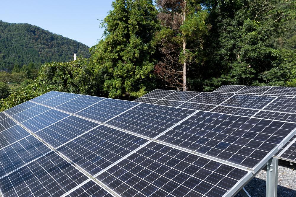 Energia solar é garantia de preservação e economia